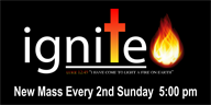 ignite mass image